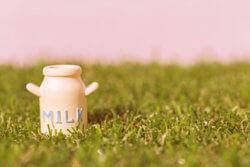 牛乳でカルシウムが取れるという洗脳も戦後GHQが刷り込み