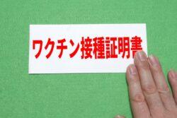 日本でもワクチンパスポートが導入される可能性さぁ打て!と言いたいよう